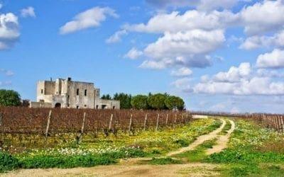 I giardini di Lecce: idee per lo sviluppo rurale della città