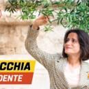 Lecce, 2 agosto. Inaugurazione comitato elettorale per Antonella Laricchia Presidente con l'intervento di Barbara Lezzi